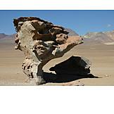 Desert, Stone, Bolivia, Arbol de piedra