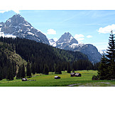 Mountain, Mountains