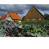 Garden, Outbuilding, Timbered, Vegetable garden