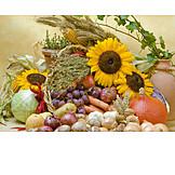 Harvest Festival, Food