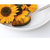 Sunflower, Food, Crop