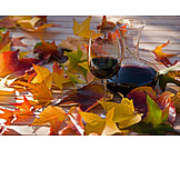 Autumn, Wine, Autumn leaves, Red wine