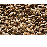 Barley, Grain, Malt