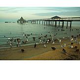 Beach, Baltic sea, Pier, Usedom, Heringsdorf