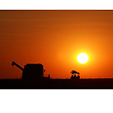 Sunset, Harvest, Combine, Field work