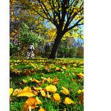 Autumn, Bicycle tour