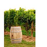 Vintage, Vineyard, Barrel, Wine barrel