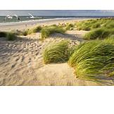 Langeoog, Coastline