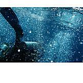 Underwater, Diver, Diving