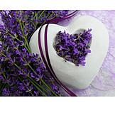 Heart, Decoration, Lavender