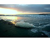 Beach, Foam, Surf