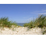 North sea, Dune, Sandy