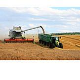 Harvest, Combine, Tractor