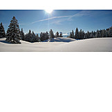 Winter, Winter landscape, Fresh snow