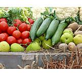 Fruit, Vegetable, Thanksgiving