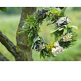 Wreath, Herb, Flower wreath