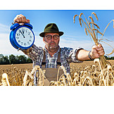 Harvest, Harvest Time, Farmer, Time Pressure