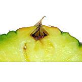 Close Up, Pineapple