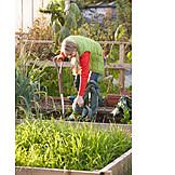 Harvest, Gardening, Gardener