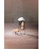 Weather, Males, Rain