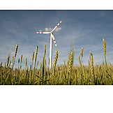 Windenergie, Alternative Energie, Getreidefeld