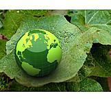 Environment Protection, Ecologically