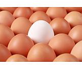 Individualität & Einzigartigkeit, Ei, Hühnerei