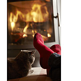 Relaxation, Cat, Comfortable, Feet, Domestic Life