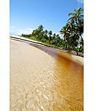 Holiday & Travel, Beach, Sandy, Bahia