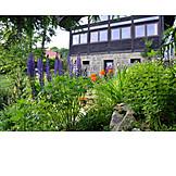 Garden, Cottage, Flower Bed