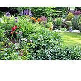 Garden, Flower Bed, Garden Pond