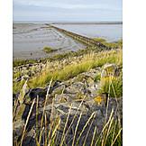 North sea, Low tide, Coastal protection