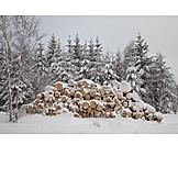 Winter, Firewood
