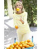 Summer, Harvest, Oranges, Fruit Harvest, Juggling