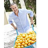 Man, Orange, Harvest