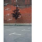 Tree, Parking lot, Markers, Tristesse