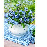 Forget, Me, Not, Bouquet, Flower vase