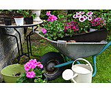 Garden, Gardening, Wheelbarrow