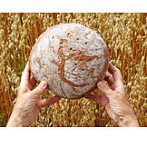 Food, Bread, Loaf