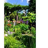Garden, Rural Scene