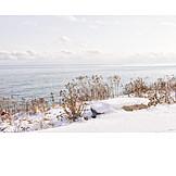 Winter, Shore