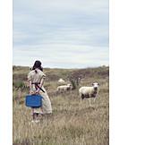 Girl, Rural scene, Journey, Sheep, Run, Travel