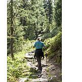 Hiking, Trail
