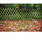 Garden, Autumn, Leaves, Rail Fence