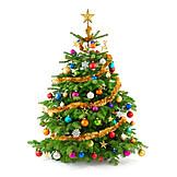 Weihnachten, Weihnachtsbaum