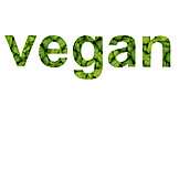 Vegetable, Vegan