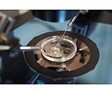 Forschung, Labor, Künstliche Befruchtung