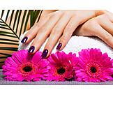 Beauty & Kosmetik, Hand, Maniküre