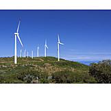 Pinwheel, Wind, Madeira