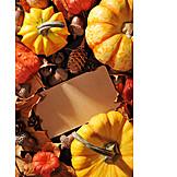 Autumn, Thanksgiving, October